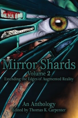 Facial Recognition (Mirror Shards) by Michele Lang